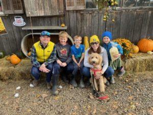 Red Oregon Labradoodle puppies
