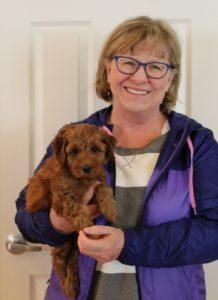 labradoodle breeders Pacific Northwest Portland Salem