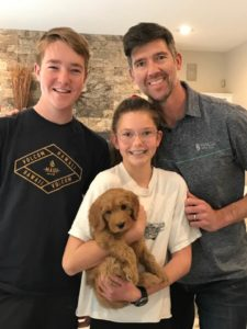 Oregon labradoodle puppies standard size