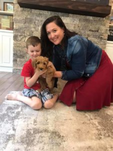 Oregon Australian labradoodle therapy puppies