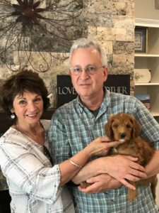 Yamhill Country Australian labradoodle puppies available Portland